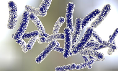 Legionella Surveys